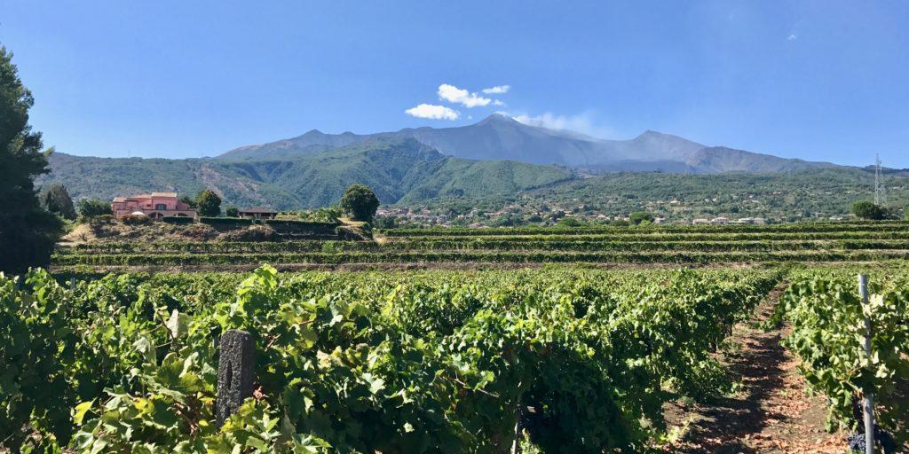 Etna Wines
